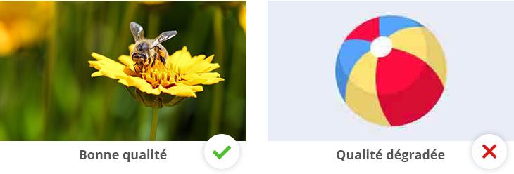 À gauche : une photo en JPEG de bonne qualité ; à droite : un logo en JPEG de qualité dégradée